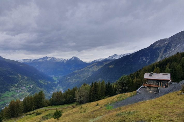 En plein milieu d'une forêt alpine, une chape à couler. [©Savoie Chape]